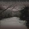 the city bleeds: Crow River Crossing